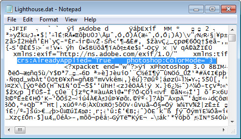Open dat file with notepad