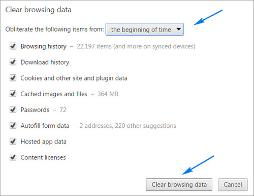 Chrome Browsing Data